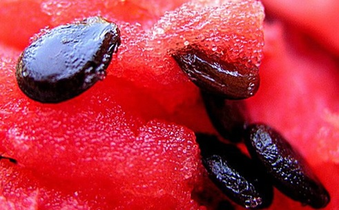 watermelon-seeds.jpg
